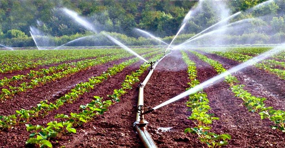 Types of Irrigation Methods